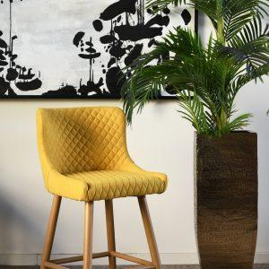 כסא בר פריזמה
